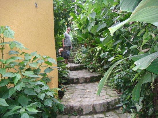 Holandes Hostel: Beco com a escada na chegada ao Hostel