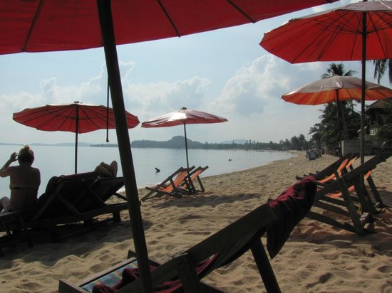 Florist Resort: beach with seats