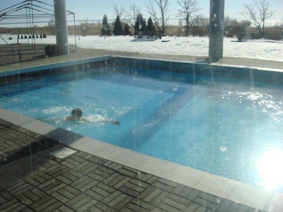 Tervise Paradiis Spa Hotel & Water Park: бассейн на улице