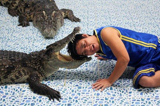 Crocodile & Snake Show Koh Chang: Смертельный номер