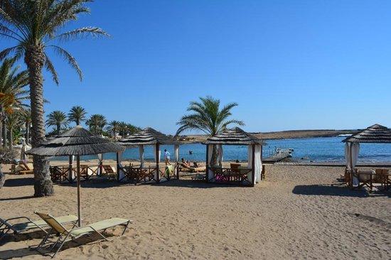 Constantinou Bros Pioneer Beach Hotel: Suiterne har privat cabana