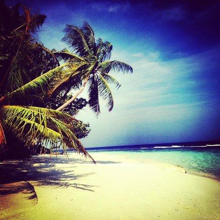 Angsana: Semplicemente Maldive