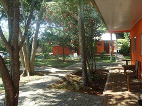 jardim ipe foz do iguacu : jardim ipe foz do iguacu:JARDIM – Picture of Hostel Paudimar Campestre, Foz do Iguacu