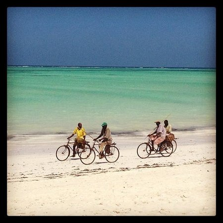 Waikiki Zanzibar Resort: Waikiki Beach