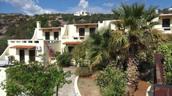 Villa Galini: View of apartments
