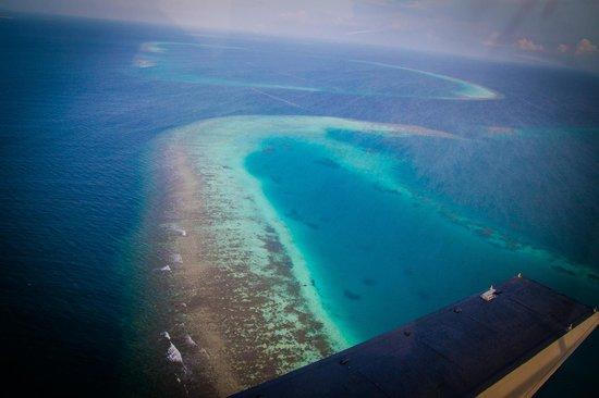 VOI Maayafushi Resort : Sea plane