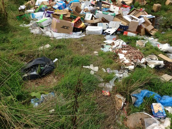 Ox Pasture Hall Hotel: rubbish tipped