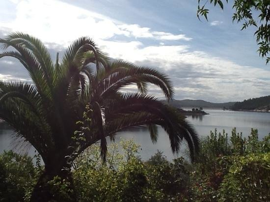 Quinta do Barranco da Estrada : view of lake from my bedroom