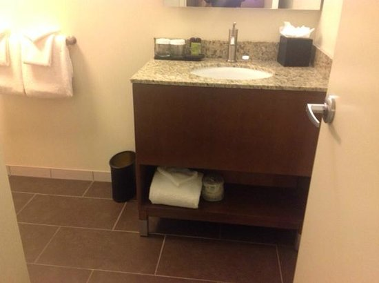 Embassy Suites by Hilton Baltimore - Inner Harbor: Bathroom