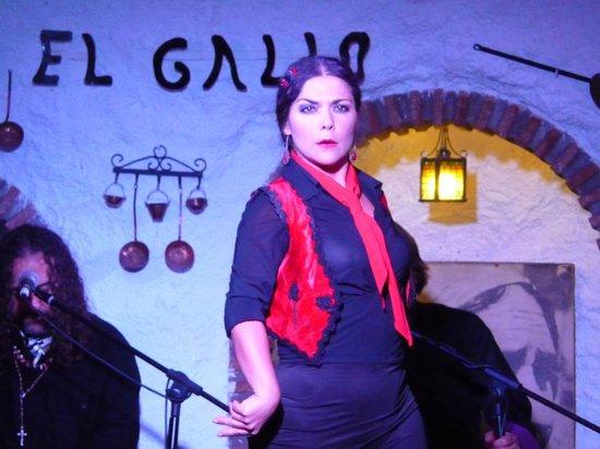 Venta El Gallo: The staring gaze of the dancer