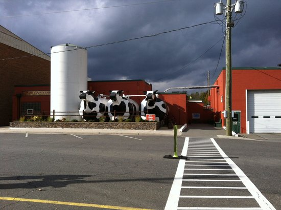 Ashe County Cheese Factory and Store: Nice cheese making facility and store in West Jefferson, NC