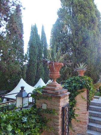 Hacienda del Cardenal: レストランを見下ろす庭