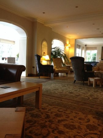 Losehill House Hotel & Spa : Lounge