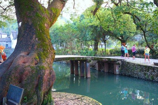 Wenzhou Yantou Village : Ancient bridge