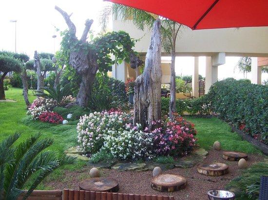 QT Hotel: Estero e giardino....curatissimi!