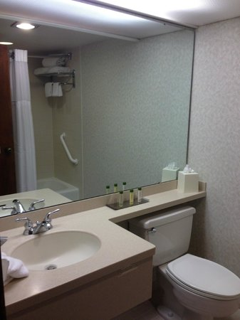 DoubleTree by Hilton San Jose: Room - bathroom