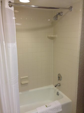 DoubleTree by Hilton San Jose: Room - shower/bath tub