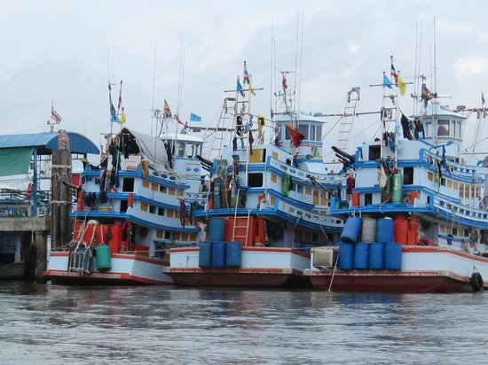 Trein Tour: Visserschepen