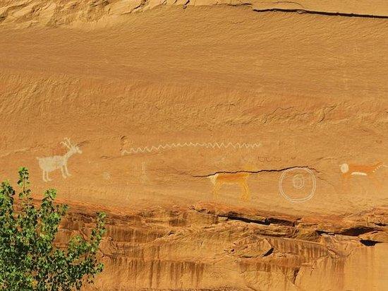 Canyon de Chelly Tours: pictographs near Antelope House