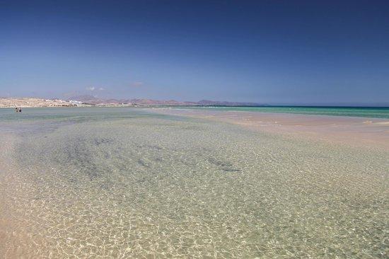 Playa de Sotavento - Picture of Playa de Sotavento, Playa de Jandia - TripAdv...