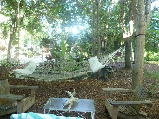 Everglades International Hostel: Hamac