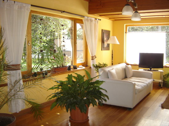 Huellas Andinas Apart Hotel : Living