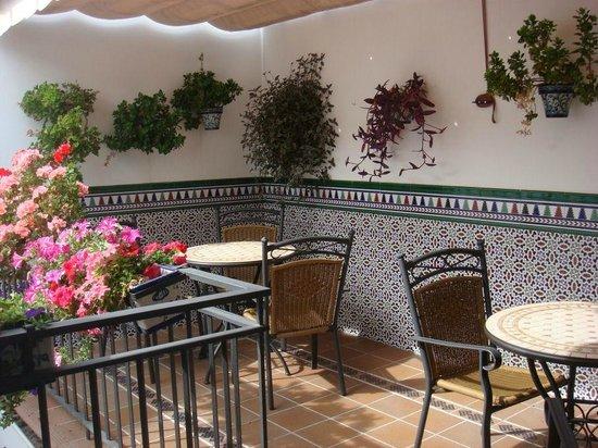 Hostal / Pension Rodri: Third floor terrace