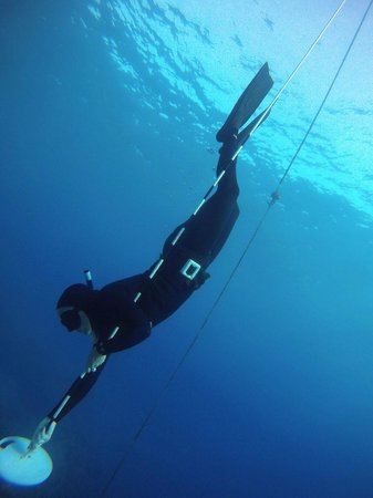 Only One Apnea Center: Total novice...........Practicing in beautiful open water in Sharks Bay  - 7 metres YAY! =)