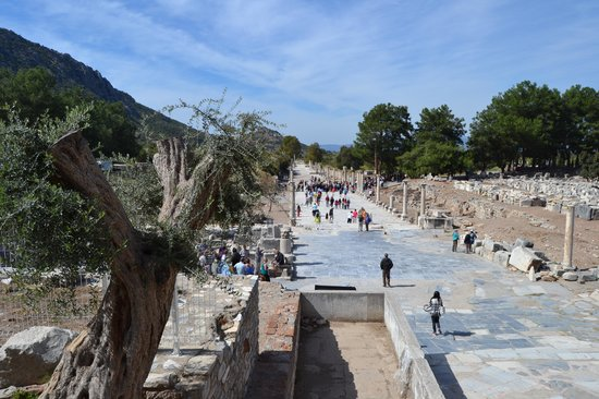 Arcadian Way: View from the Ephesus Theater