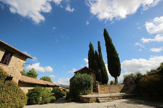 Castello Banfi - Il Borgo : Gorgeous
