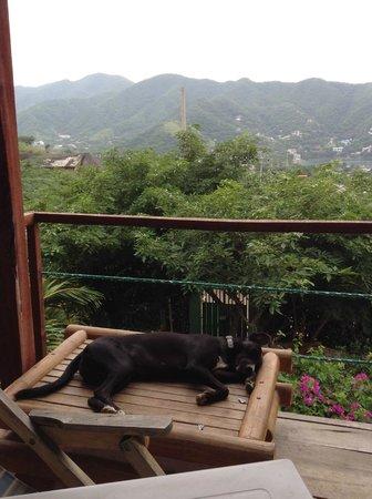 Casa Los Cerros Taganga: View from poolside breakfast