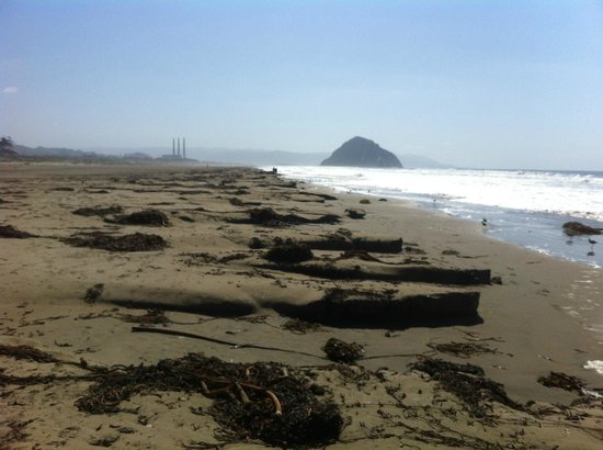Morro Strand State Beach : Looking south