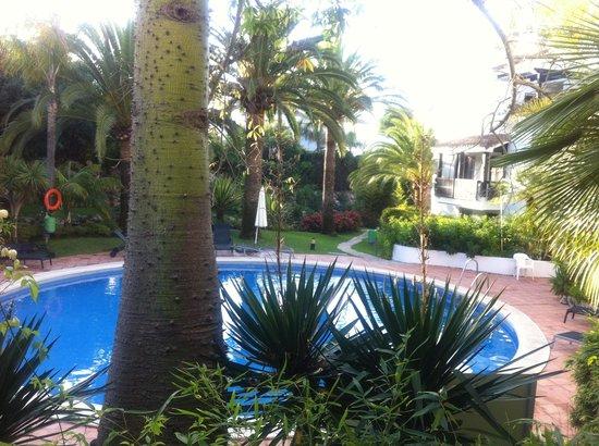 Alanda Club Marbella: pool