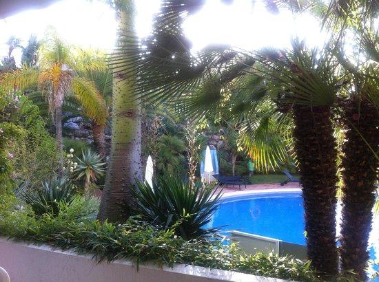 Alanda Club Marbella: pool 2
