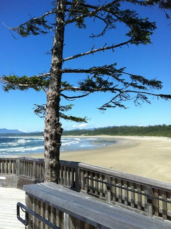 Kwisitis Feast House Restaurant: The beach is our front yard