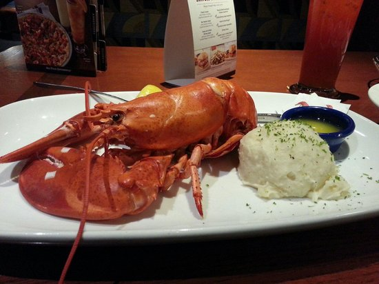 Yeah It S Not The Best Review Of Red Lobster Lexington Ky Tripadvisor