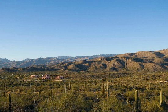 Tanque Verde Ranch: View from the sunset hike