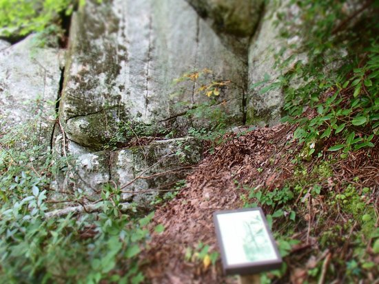 South Mountains State Park: pretty interesting read about the crack in the mountains