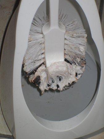 Catalani & Madrid Hotel: Toilet brush 2