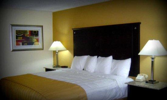 Quality Inn and Suites Airpark East: King Room