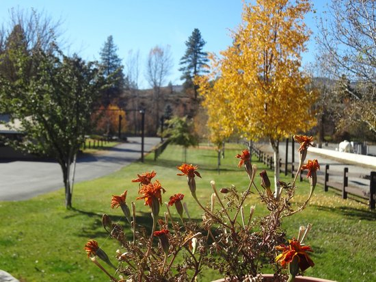 Winthrop Inn : Fall Colors in the Side Yard