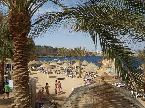 Dreams Beach Resort: The Beach