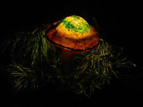 Lucky Bug B & B: One of many lovely little mushroom lamps