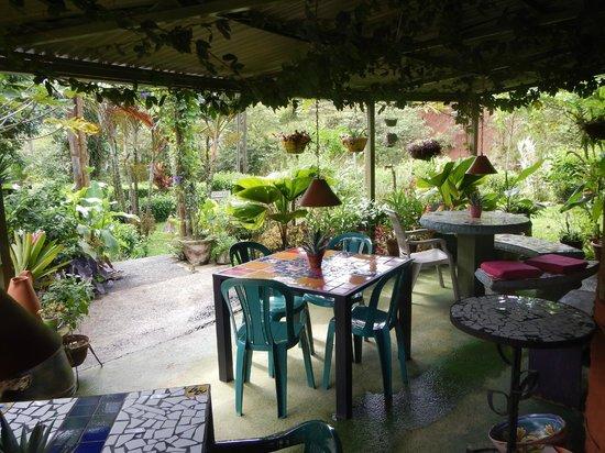 Lucky Bug B & B: Restaurant patio