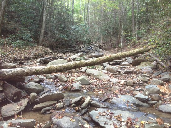 The Lodge at Buckberry Creek: Buckberry creek @ pavillion