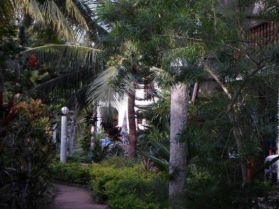 Flower Garden Resort: The hotel garden