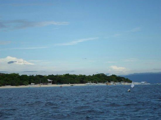 Flower Garden Resort: The Balicasag Island in Panglao Bohol