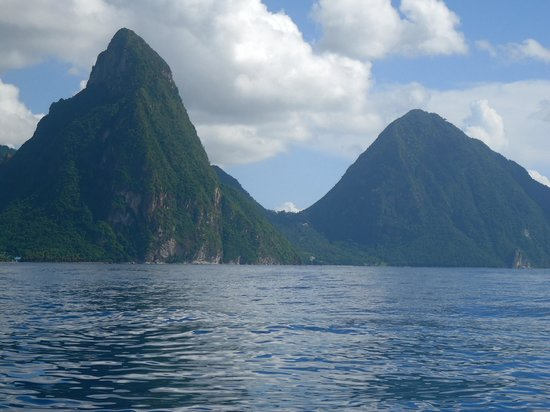 Dolphin Dive Adventure: Pitons