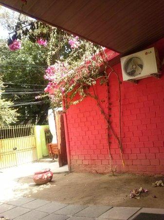 Cosmopolitan Hostel : Entrada
