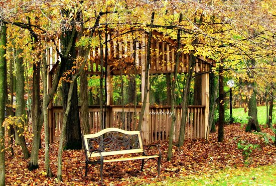 Leisure Estates Bed & Breakfast Retreat : Beauitful grounds-so many photo opportunites